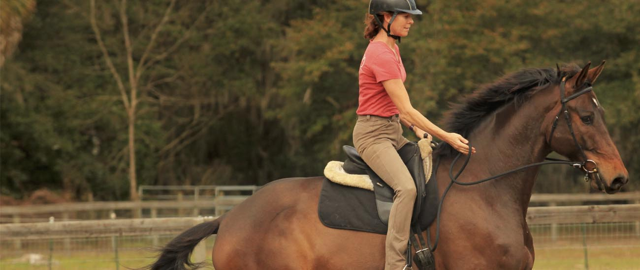 Improve Your Canter